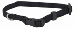 Coastal Pet Products 06301 A BLK12 Dog Collar, Adjustable, Black Nylon, 3/8 x 8-12-In.