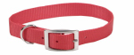 Coastal Pet Products 00301 B RED12 Dog Collar, Red Nylon, 3/8 x 12-In.