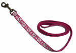 Coastal Pet Products 46385 B PKF04 Lazer Brite Dog Leash, Reflective, Pink Flamingo, 3/8-In. x 4-Ft.