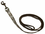 Coastal Pet Products 46385 B CPS04 Lazer Brite Dog Leash, Reflective, Chocolate, 3/8-In. x 4-Ft.