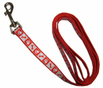 Coastal Pet Products 46385 B RPS04 Lazer Brite Dog Leash, Reflective, Red, 3/8-In. x 4-Ft.