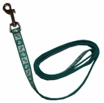 Coastal Pet Products 46385 B TPW04 Lazer Brite Dog Leash, Reflective, Teal, 3/8-In. x 4-Ft.