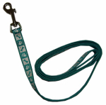 Coastal Pet Products 46484 B TPW04 Lazer Brite Dog Leash, Reflective, Teal, 5/8-In. x 4-Ft.