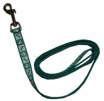 Coastal Pet Products 46984 B TPW04 Lazer Brite Dog Leash, Reflective, Teal, 1-In. x 4-Ft.