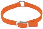 Coastal Pet Products R2905 G SOR18 Dog Collar