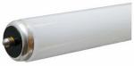 G E Lighting 66856 Linear Fluorescent, 60 watt, warm white, high lumen