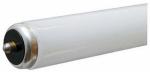 G E Lighting 66860 Linear Fluorescent, 60 watt, daylight, high lumen