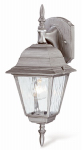 Westinghouse Lighting 67850 Wall Light Fixture, Outdoor, Antique Silver & Clear Glass, 100-Watt, 6 x 15.75-In.