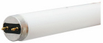 G E Lighting 69844 32-Watt Ecolux T8 Sunshine Fluorescent Bulb