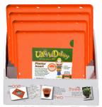 Bloem PDQ-TS6321-4 24cs Ups-A-Daisy Square PDQ Case Pack