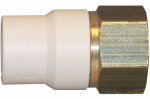 Genova Products 57907Z CPVC Transition Adapter, Lead-Free Brass, 3/4-In. MPT