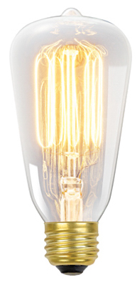 01321 Vintage Edison Light Bulb, Tinted Glass, S60, 60-Watts