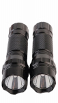 "Promier Products DB12-RZ250X2-24 ""AAA"" Flashlights, LED Light, 2-Pk."