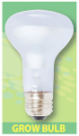 Hydrofarm BURP413 Dayspot Grow Light Bulb, 60-Watt