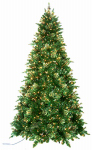 Equinox 2 WLD-1L11-75QZ Quik-Lite Artificial Christmas Tree, 850-Clear Lights, 7.5-Ft.