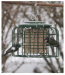 World Source Partners NT075 Oval Classic Suet Bird Feeder
