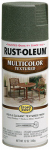 Rust-Oleum 223526 12OZ Forest Text Paint