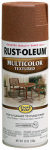 Rust-Oleum 239122 12OZ Umber Textur Paint