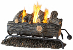 Real Flame 2609-O Gel Log Conversion Set, 24-In.