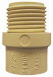 Genova Products 50455 1/2 CPVC Riser Adapter