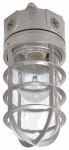 Cooper Lighting VT100G Floodlight With Bulb Guard, Incandescent, 100-Watt