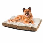 Petmate 80437 Dog Bed, Micro or Micron or Microfiber Suede Fabric, Tan, 27 x 36-In.