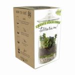 Syndicate Home & Garden 100-06-00 DIY Terrarium Kit