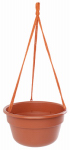 Bloem DCHB10-46 Dura Cotta Hanging Basket, Terra Cotta, 10-In.