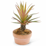 K&K Interiors 12352D Faux Greenery, Red Mini Palm Tree, 7.5-In.