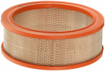 Fram Group CA79 Air Filter, CA79