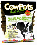 Cowpots CP 3 SQ 12PK - 12PKS Plantable Pots, Square, 3-In., 12-Pk.