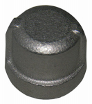 "Larsen Supply 32-2951 1/8"" Stainless Steel Pipe Cap"