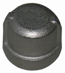 "Larsen Supply 32-2953 1/4"" Stainless Steel Pipe Cap"