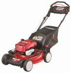 Mtd Products 12ACC3A6766 Self-Propelled  Lawn Mower, Electric Start, 163cc, 21-In.