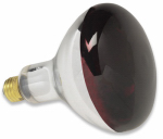 Havells Usa 5003072 Heat Lamp Bulb, 250-Watt