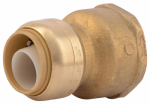 Sharkbite/Cash Acme U086LFA Push-Fit Pipe Connector, .75 x 1-In.