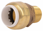 Sharkbite/Cash Acme UIP120A Push Fit Pipe Connector, .5-In. PVC x .5-In. MPT