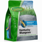 Dlf GREUN210 Premium Coated Kentucky Bluegrass Seed, 3-Lbs.