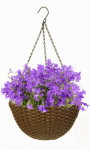 Panacea Products 82303 Resin Wicker Hanging Basket, Brown, 14-In.