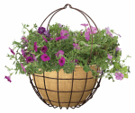 "Panacea Products 83595 14"" Rust Hang Basket"