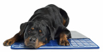 Q10 Products Dba Enchanted Home Pet CO2628-15 Gel Cell Pet Cooling Pad, 23 x 36-In.