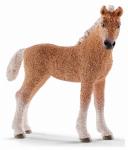 Schleich North America 13781 BRN Bashkir Curly Foal