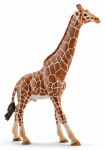 Schleich North America 14749 Tan Male Giraffe