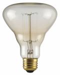 Globe Electric 84654 40W, Designer LABO Bulb, Incandescent