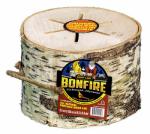 Essay Group 8-97162-00059-3 Light Go Bonfire Log