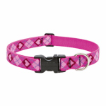 Lupine 14252 1x12-20 PL Dog Collar