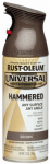 Rust-Oleum 245218 12-oz. Hammered Brown Spray Paint