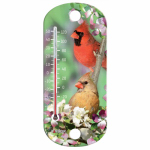 Taylor Precision Products 90151-000-000 8-Inch Blue Jay Indoor/Outdoor Tube Thermometer