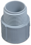 Thomas & Betts E943FR-CTN 1-Inch PVC Terminal Adapter