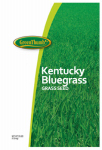 Barenbrug Usa 491095 25-Lb. 85/80 Kentucky Bluegrass Seed